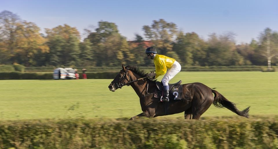 Cantering to the start