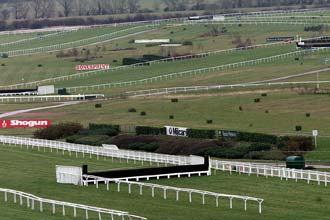 Cheltenham Racecourse, scene of Desert Orchid's triumph in the 1989 Gold Cup