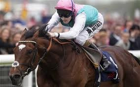 Frankel Won All His Races