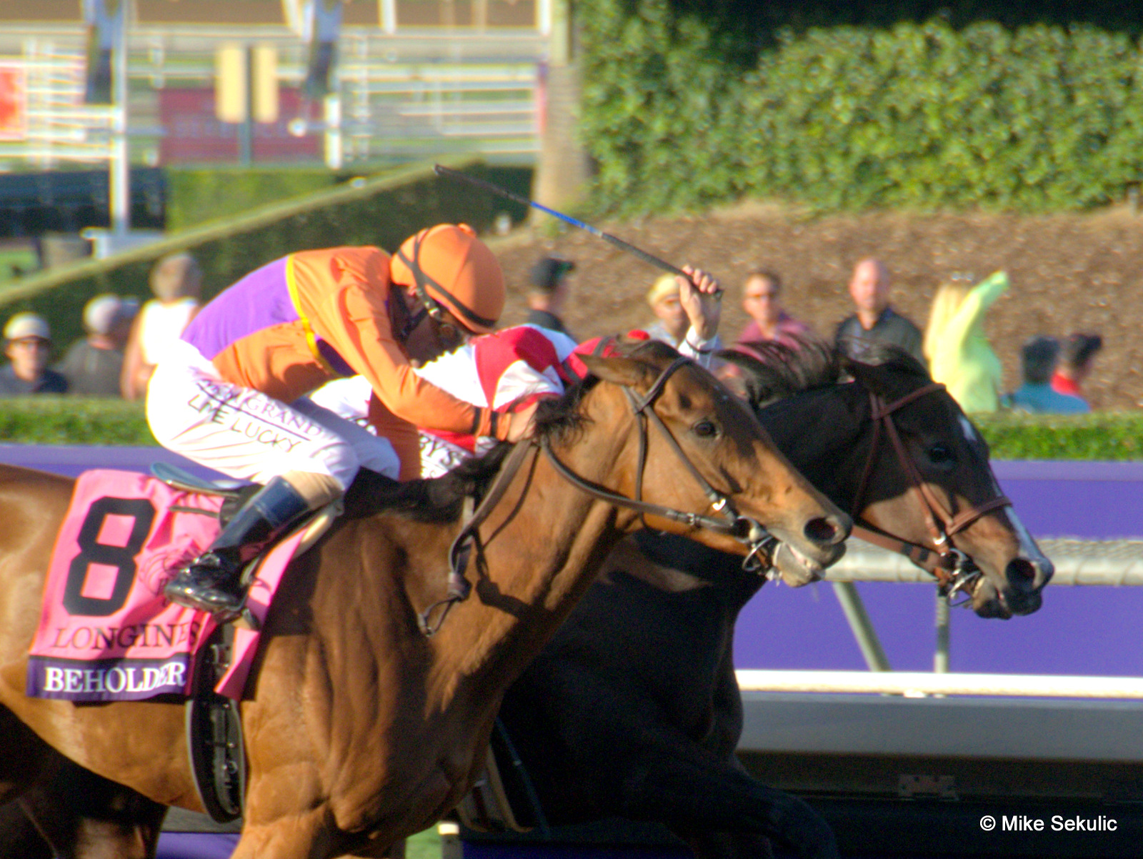 Beholder just holds Songbird by a nose to win the BREEDERS' CUP DISTAFF