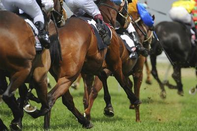 Horse Racecourses