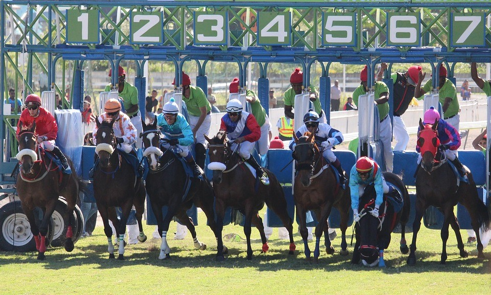 Melbourne Cup Starting Gate