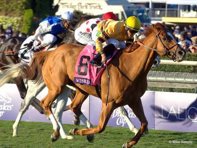 U.S. Horse Racing