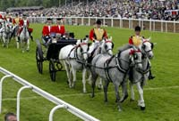 Carriages at Royal Ascot