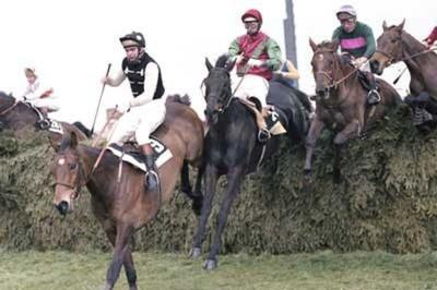 Grand National 1978 in which S Norton had 2 runners