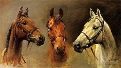 Three Kings Horses