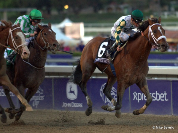 Mucho Macho Man on Kentucky Derby Trail