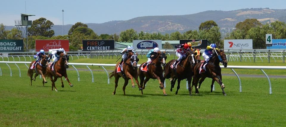 Horse Racing on the flat